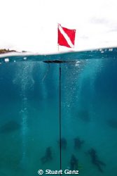 Open water class @ Sharks Cove, Oahu's North Shore. by Stuart Ganz 